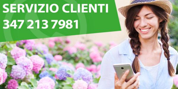 Servizio clienti tararà piante e fiori